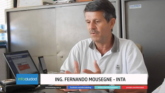 """Fernando Mousegne: """"En soja las variedades también son una atracción"""""""
