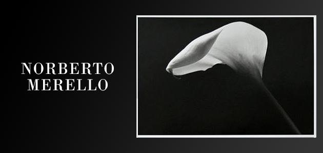 Fotografías de Norberto E. Merello en la Sociedad Francesa