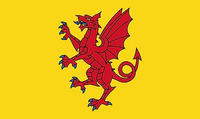 Somerset_Flag.png