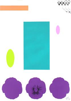 pansy drawing#3_종이에 아크릴_29.7x21