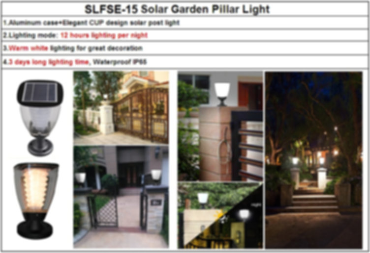 SLFSE-15