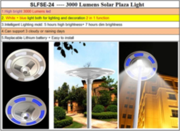 SLFSE-24