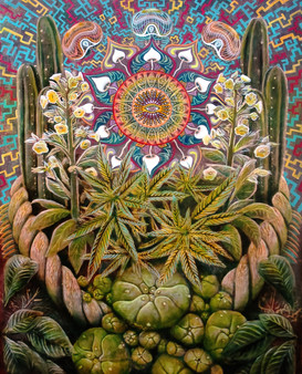 master plants.jpg