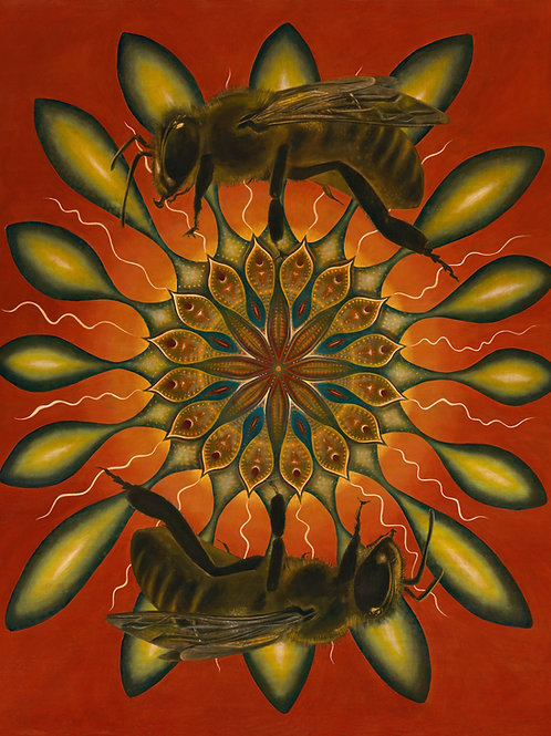 copy of Two bees - Giclee Print by Clive Hedger