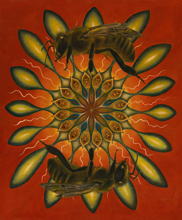 two bees by Clive Hedger