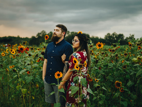 Sunflower Mini Sessions.