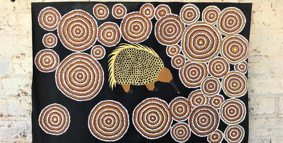 Echidna By Stanley Ashwin