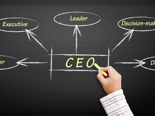 O CEO 'PREMIUM' e suas fases de trabalho.
