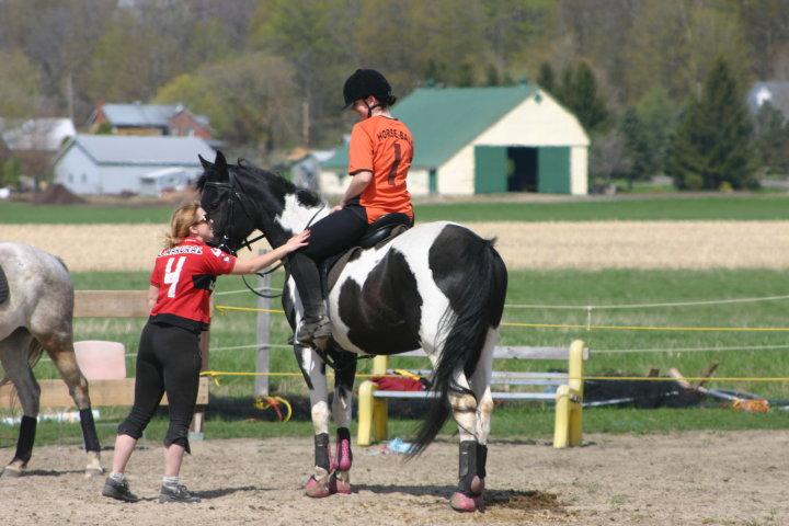 Leçons d'équitation \ Horse riding