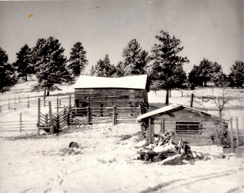 Cabin with old corrals and barn 1949?