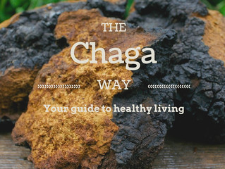 The Chaga Way