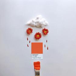 Tangerine Tango, provocative and dramatic 💥 ☁️ Este fue el color del año 2012
