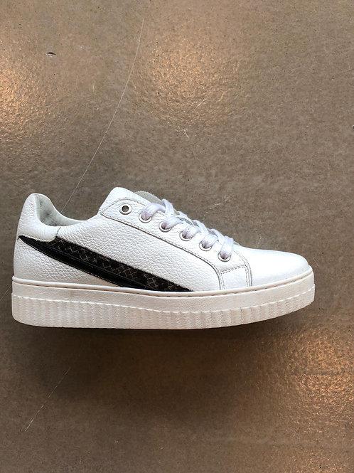 Shoecolate Z0510.21