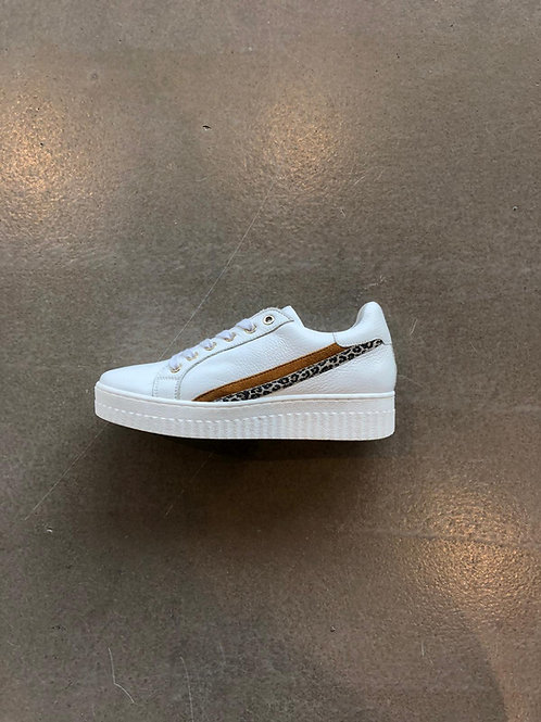 Shoecolate Z0507.21