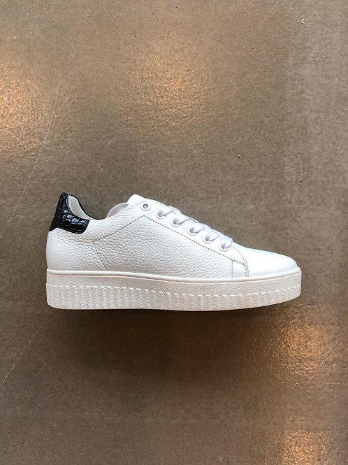 Shoecolate Z0509.21