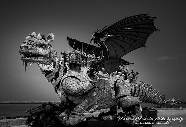Dragon calais B&w 1 fili (1 sur 1).jpg
