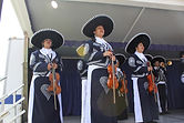 National City Mariachi Fesival