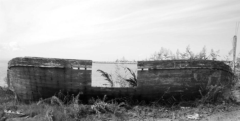 varka2 Black and white 2.JPG