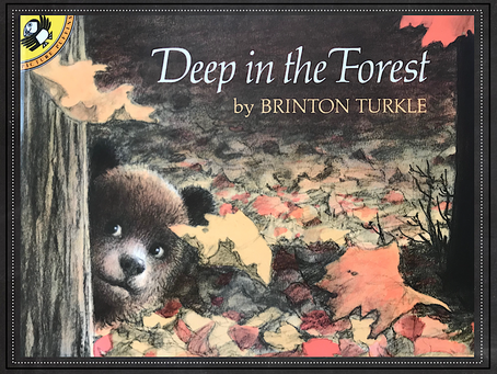 Wordless Wednesday ~ Wordless Picture Books