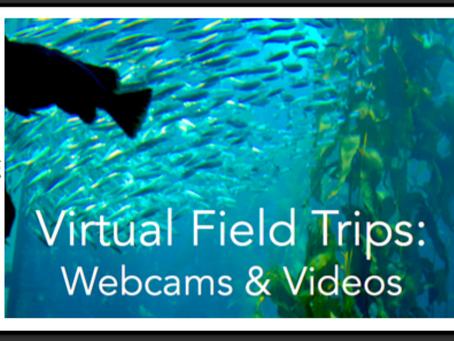 Virtual Field Trips: Webcams & Videos