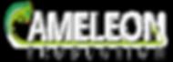 logo cameleon lettrage blanc copie.png