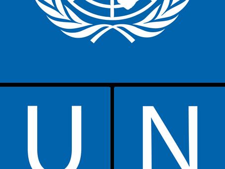 Волонтерские возможности 2020 в ООН