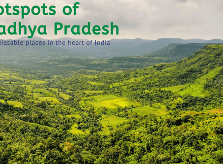 8 Unmissable Places in Madhya Pradesh