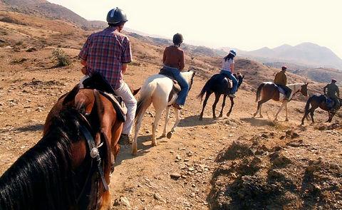 Rajasthan Horse Riding.jpg