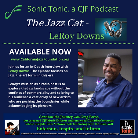 LeRoy Downs - Sonic Tonic - 7921 (1).png