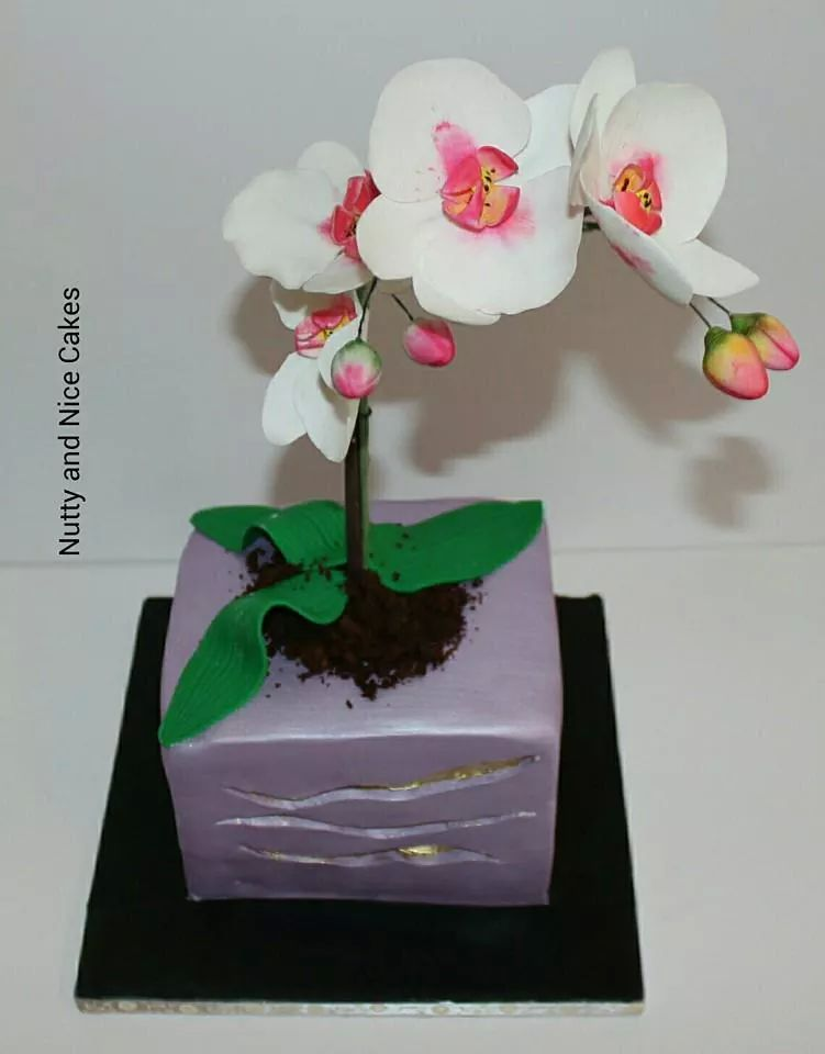 Orchid Flower Cake 2