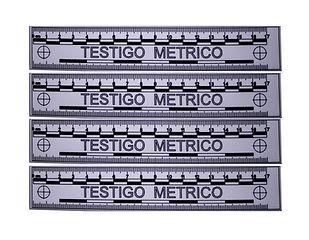 Testigo Metrico.jpg
