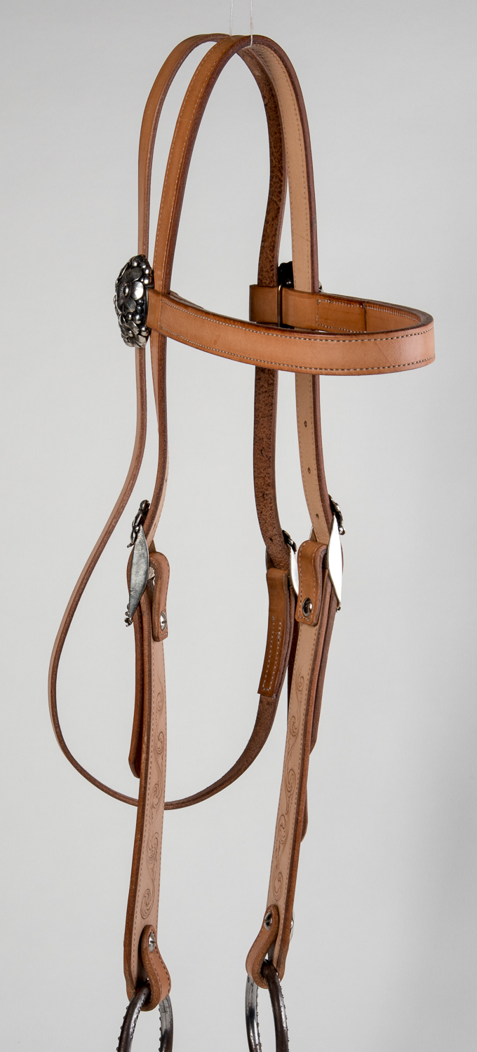 Fusion Silver Show Headstall