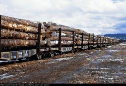 19790215 OR Seneca ONW Log Cars rrpa