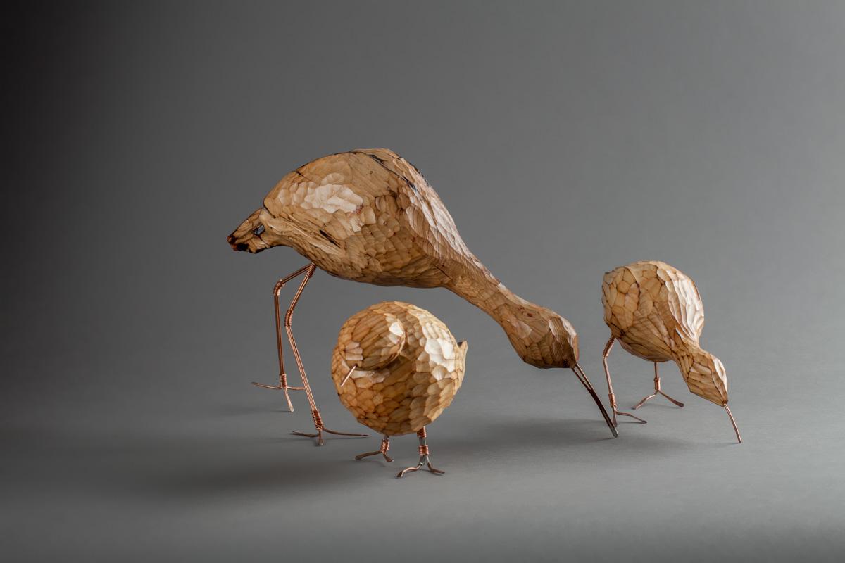68-Oiseaux de rivage-2013 .jpg