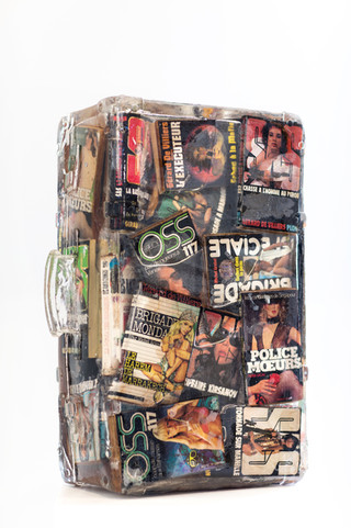 Suitcase book thriller