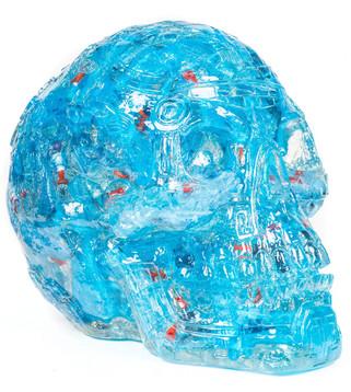 Skull plastic guns