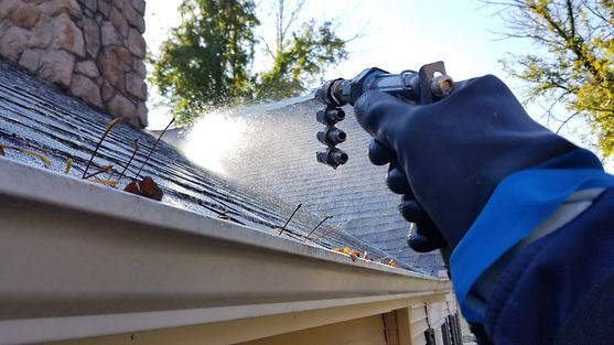 Roof Cleaning .jpg