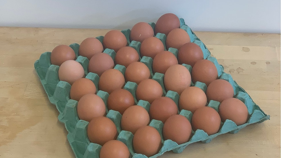 Tray of Eggs (30)