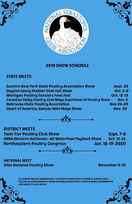 show schedule final 2019.png