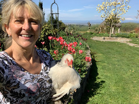 me with tulips and chicken.jpeg