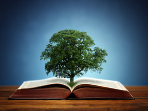 Three Reasons Why Books Grow Businesses