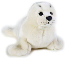 Little White Baby Seal
