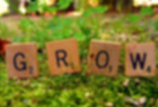 GROW3.jpg