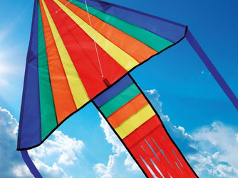 FAMILY KITE FEST JUNE 9TH AT HOMECOMING  PARK