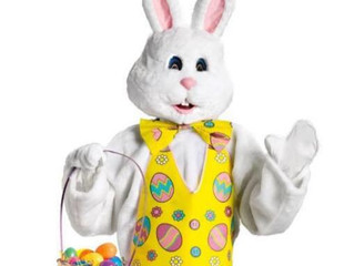 Ambria Photography To Host The Easter Bunny For Photos During Wauseon Downtown Chocolate Walk On Apr