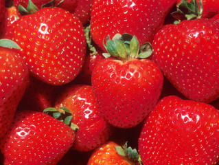 Strawberry Festival Returns to Downtown Wauseon on Saturday June 18th
