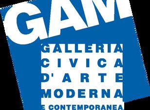 """""""FORMA/INFORME. La fase non - oggettiva nella fotografia Italiana 1935 - 1958"""", GAM, Torin"""