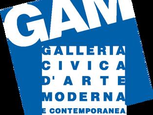 """""""FORMA/INFORME. La fase non - oggettiva nella fotografia Italiana 1935-1958"""", GAM, Torino"""