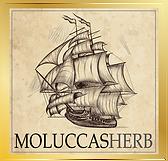 LOGO-MOLUCCAS-2.png