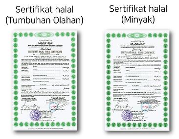 2 halal 2.png